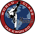 Master Moon's World Class Tae Kwon Do Logo